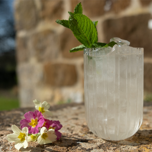 BORA Daquiri with sprig of lime and blossom flowers